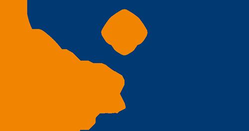 next-level-tent-logo